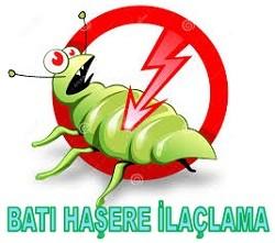 İstanbul'da Böcek İlaçlama Firması Nasıl Açılır